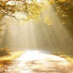 Platão: um espiritualista na Grécia