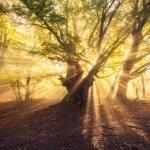 8 coisas sobre espiritismo que provavelmente você não saiba
