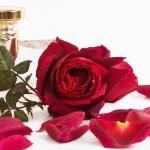 Simpatia para se livrar de uma decepção amorosa e seguir em frente
