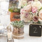 Numerologia e Florais: descubra qual o floral de bach ideal para você