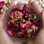 Aromaterapia – você sabe o que é Psicoaromaterapia?