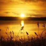 Salmo 8 – significado das palavras de louvor à criação divina