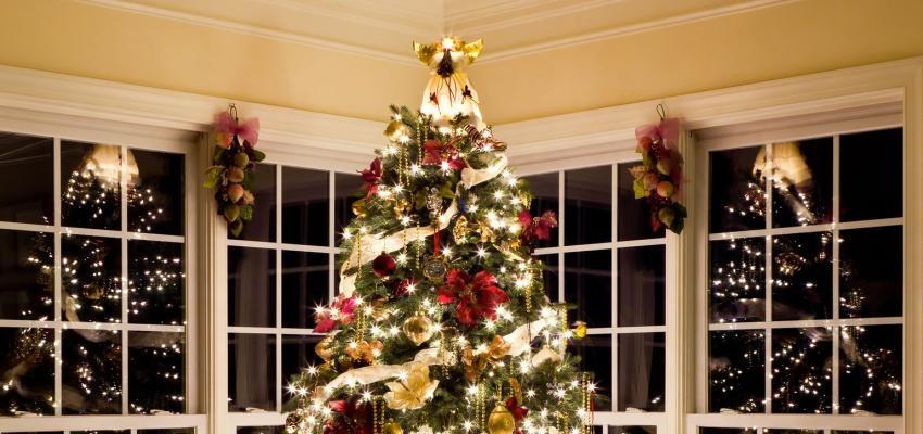 Dicas do Feng Shui para posicionar a árvore de Natal