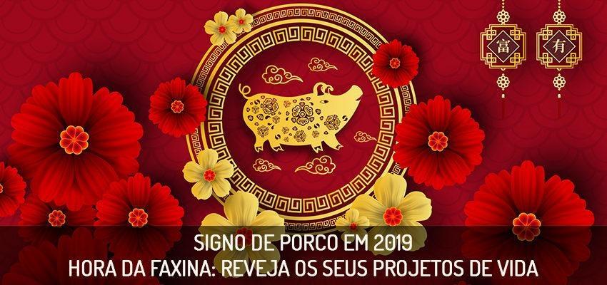 Horóscopo Chinês 2019: como será o ano para o signo Porco