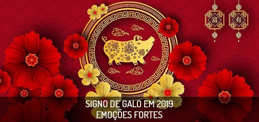 Horóscopo Chinês 2019 – como será o ano para o signo Galo
