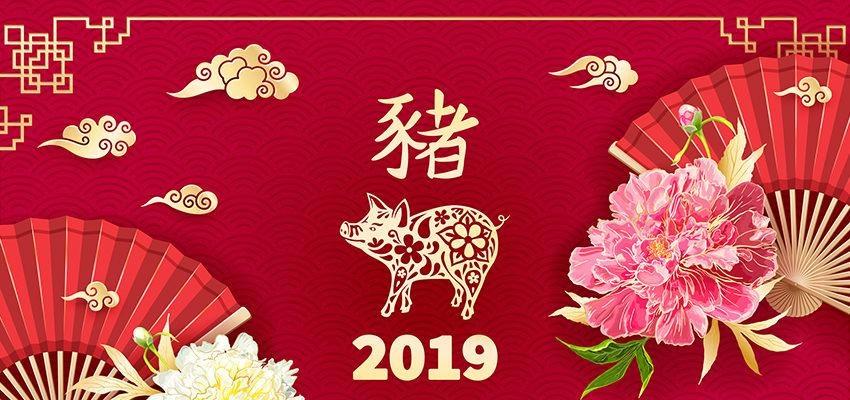 Ano Novo Chinês de 2019: tradição, celebração e prosperidade