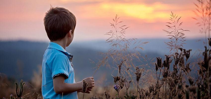 As crianças podem entender a morte?