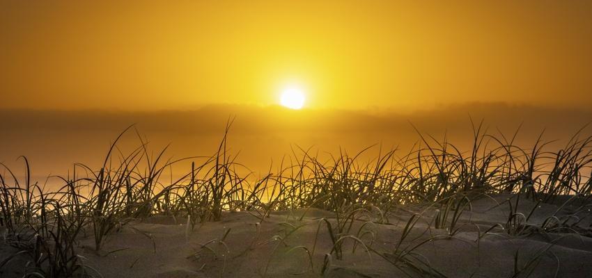 Simpatias com sol para prosperidade, amor e proteção