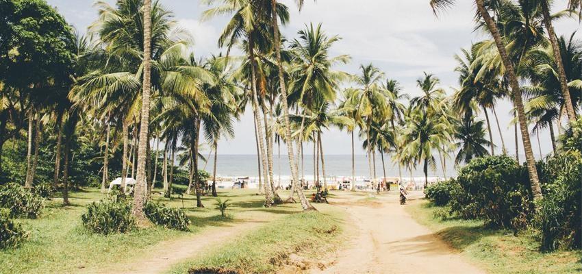 7 locais no Brasil onde os campos de energia vão renovar sua vida