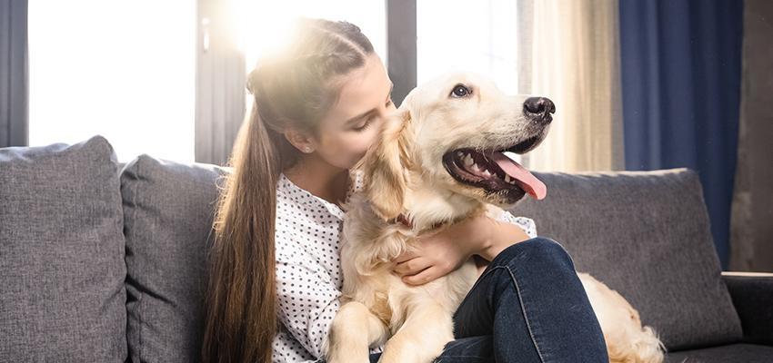 A humanidade merece os cachorros?