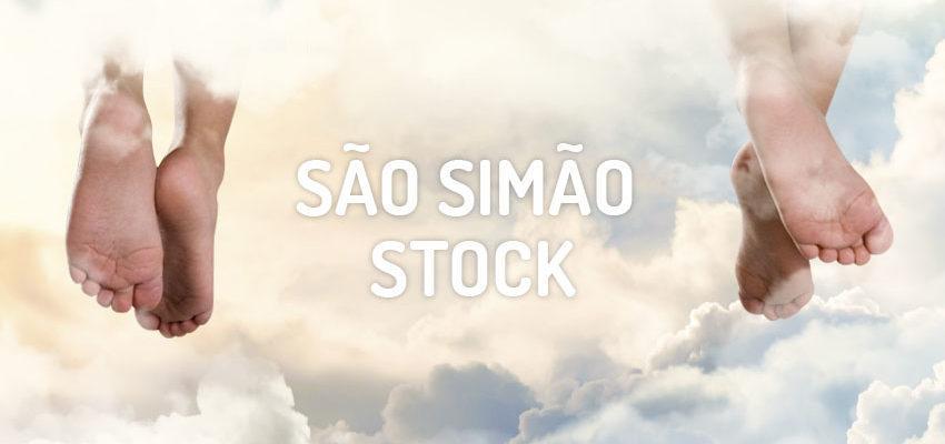 Santo do dia 16 de maio: São Simão Stock
