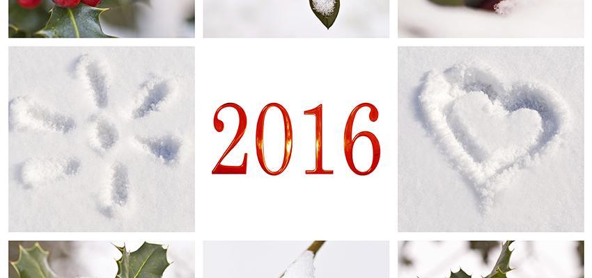 Numerologia 2016 no amor – bom momento para ficar só