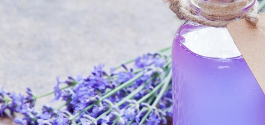 Conheça os 4 principais óleos vegetais usados na aromaterapia