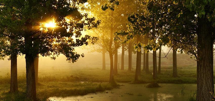 Materialização no Espiritismo – como os espíritos aparecem para nós?