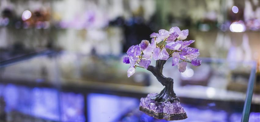 Feng Shui – as melhores plantas e cristais para relacionamentos