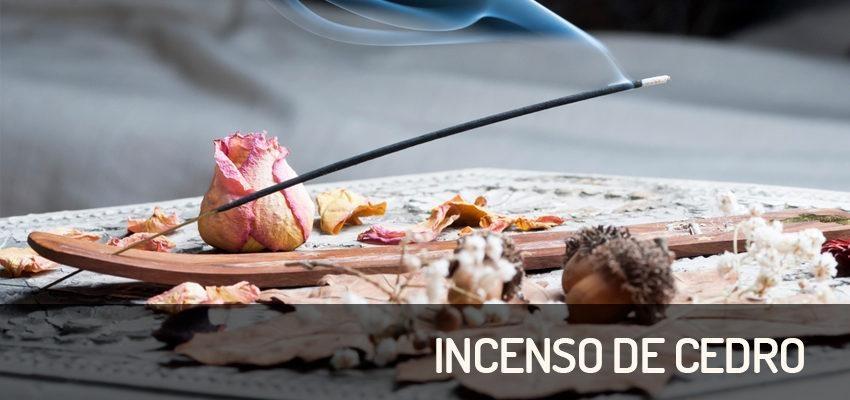Incenso de Cedro – o aroma nobre que atrai sucesso nas vendas