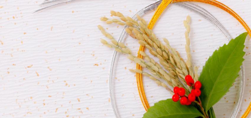 Aprenda a fazer um amuleto de ervas para ter sorte e proteção