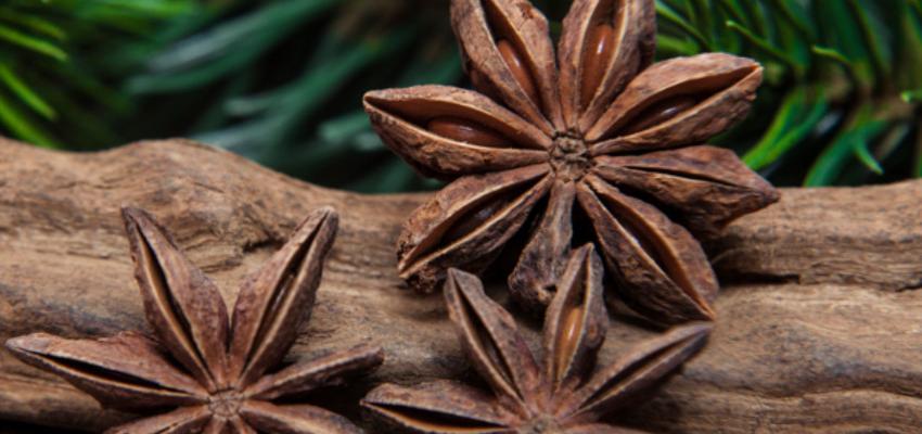 Conheça 5 banhos poderosos com anis estrelado