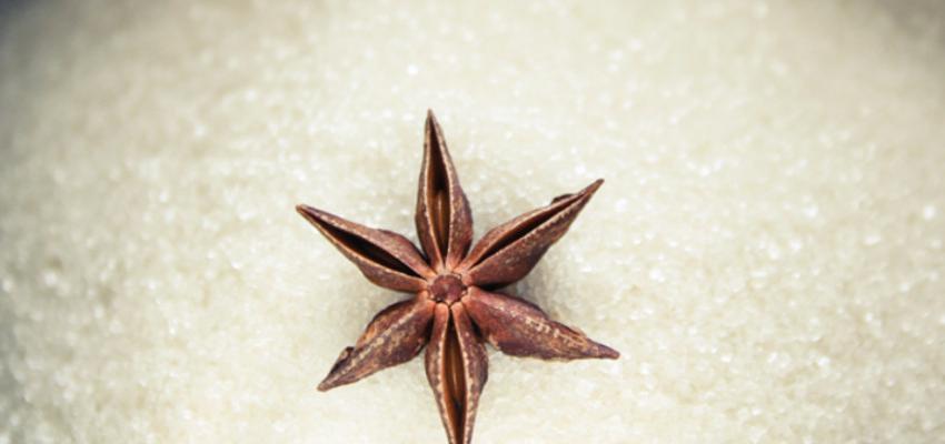 Como cultivar anis estrelado em casa