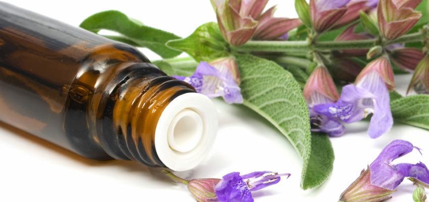 Conheça os óleos essenciais indicados para cada cômodo da casa