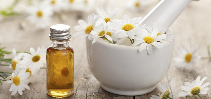 Aromaterapia com camomila para mulheres