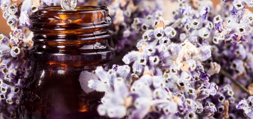 Aromaterapia – o uso de óleos essenciais no combate ao medo