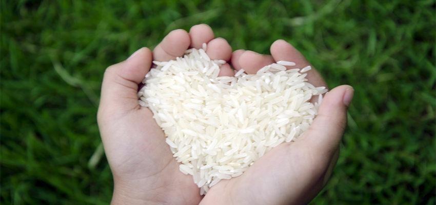 Simpatia do arroz – para atrair amor de volta e dinheiro