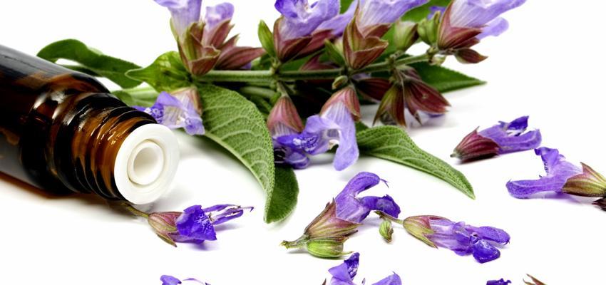 O poder da aromaterapia para a fertilidade natural