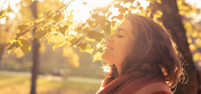 Ayurveda em estações: cuidados de Vata durante o Outono