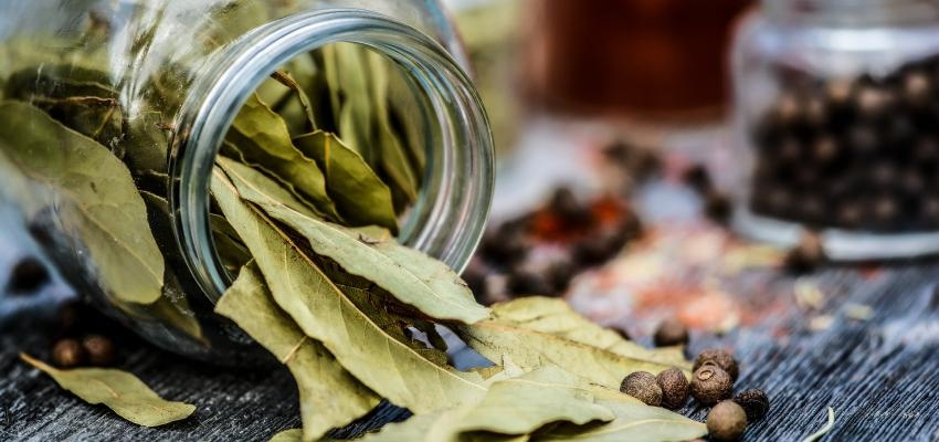5 temperos que não podem faltar na sua cozinha, segundo Ayurveda