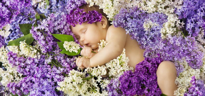 Florais para o seu bebê dormir bem e superar inseguranças