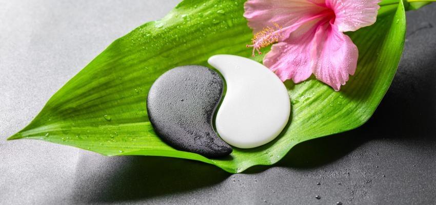 O Yin-Yang para a vida: saiba como priorizar o equilíbrio