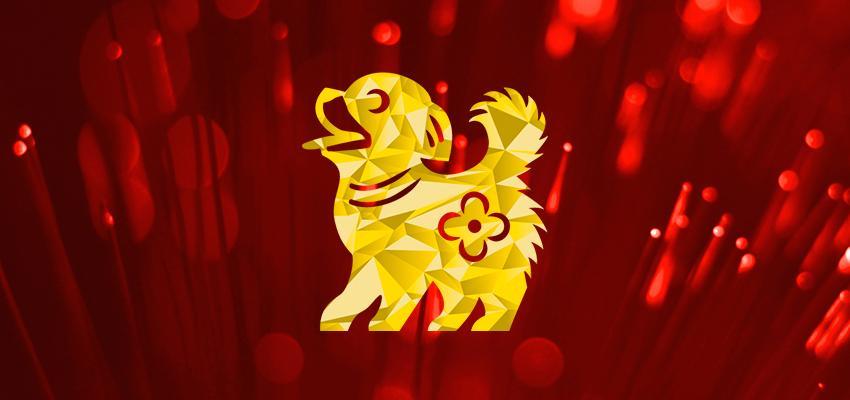 A compatibilidade do Cão com os outros signos do Horóscopo Chinês