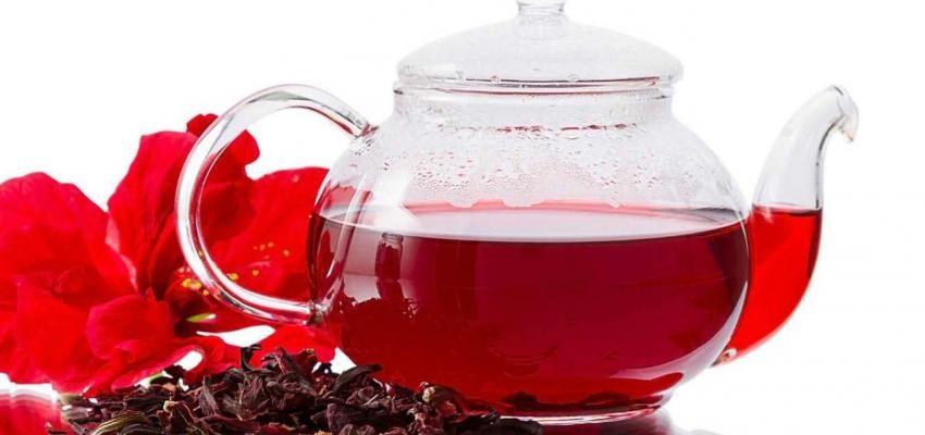 Chá de Hibisco: saiba tudo sobre o chá da planta vinagreira