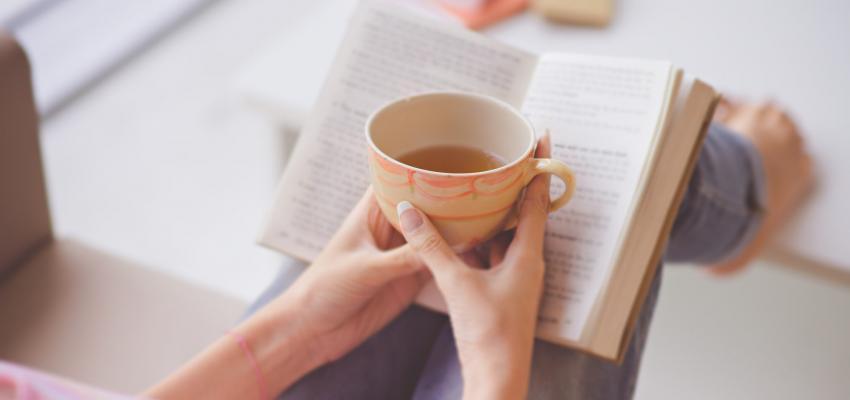 Conheça o poder do chá de carqueja