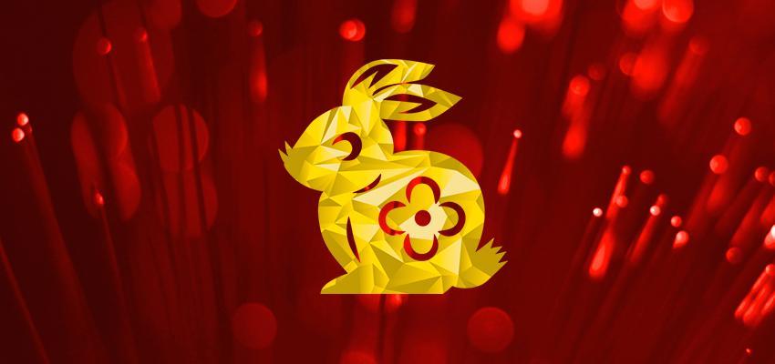 A compatibilidade do Coelho com os outros signos do Horóscopo Chinês
