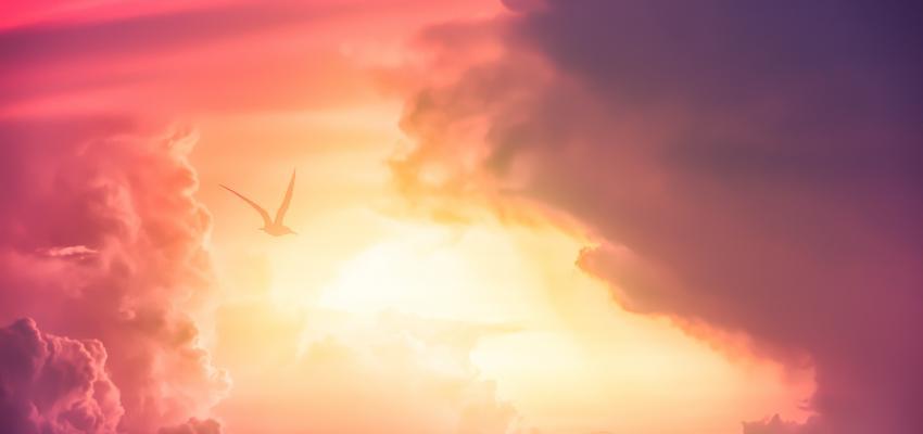 Esmola espiritual – uma poderosa prece de Cáritas