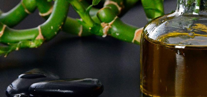 Como funcionam óleos essenciais? Em quanto tempo faz efeito? Descubra!