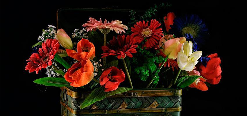 Como usar flores e plantas no Feng Shui