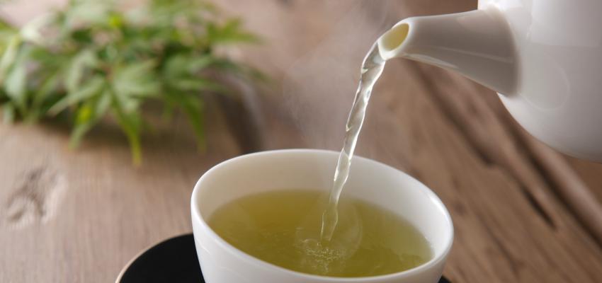Chá Verde: conheça o poder e os benefícios do Chá Verde