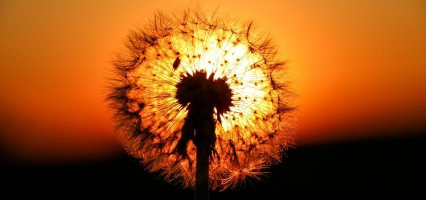 Horóscopo dos orixás: conheça o poder do seu signo