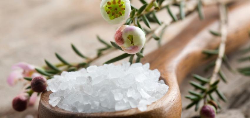 Ayurveda na mesa: receitas para o dosha Pitta