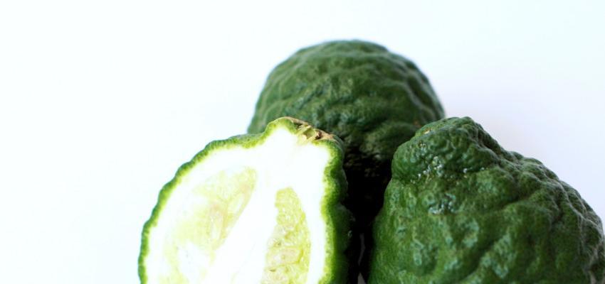 Dieta detox ayurvédica - purifique seu organismo após os exageros