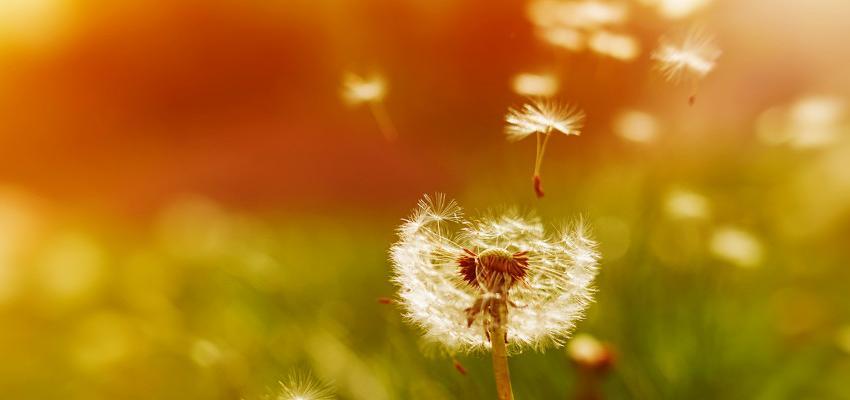 5 dicas para evitar absorver energia negativa dos outros