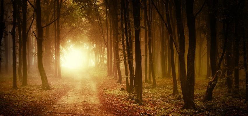 Espiritismo: o que é a visão espírita?