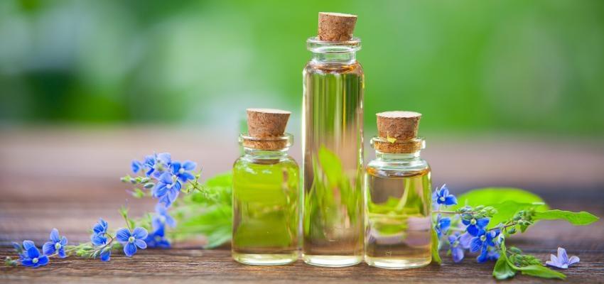 Aromaterapia: como mudar a energia da casa através de óleos essenciais