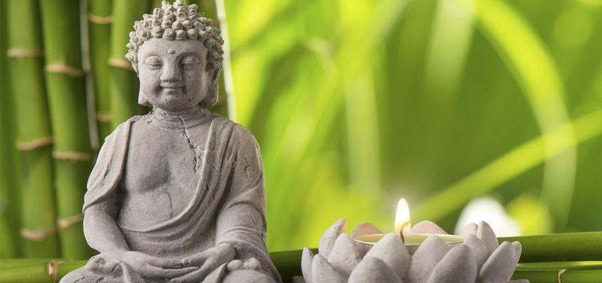 Harmonização express com Feng Shui – equilibre as energias da sua casa