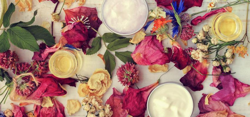 Florais Joel Aleixo: o sistema floral baseado na alquimia