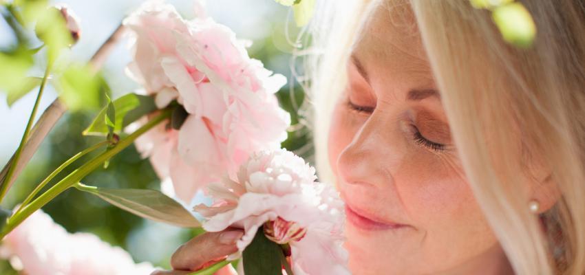 Florais para idosos: como aproveitar plenamente a melhor idade