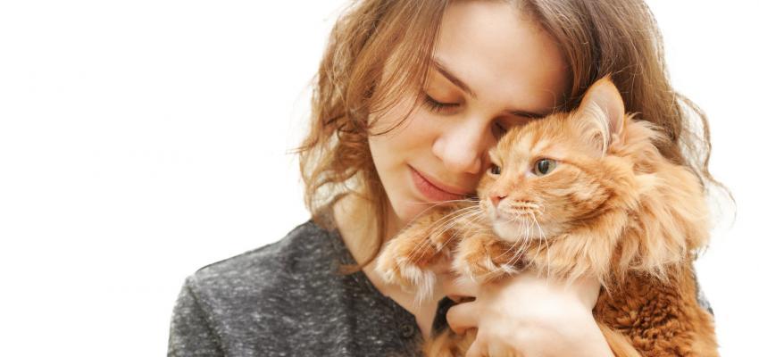 Gatos e espiritualidade – Os poderes espirituais dos nossos felinos